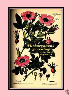Omslag Flickorganens genealogi